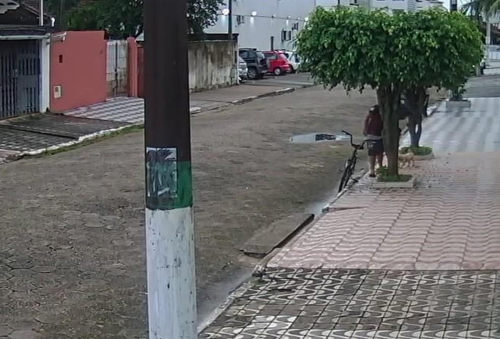 O rapaz abandonou o cachorro em Praia Grande, SP — Foto: G1 Santos