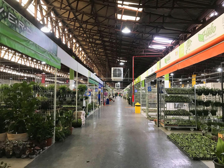 Novidade em SP, Mercadão das Flores tem 21 mil m² para quem ama plantas (Foto: Amanda Sequin)
