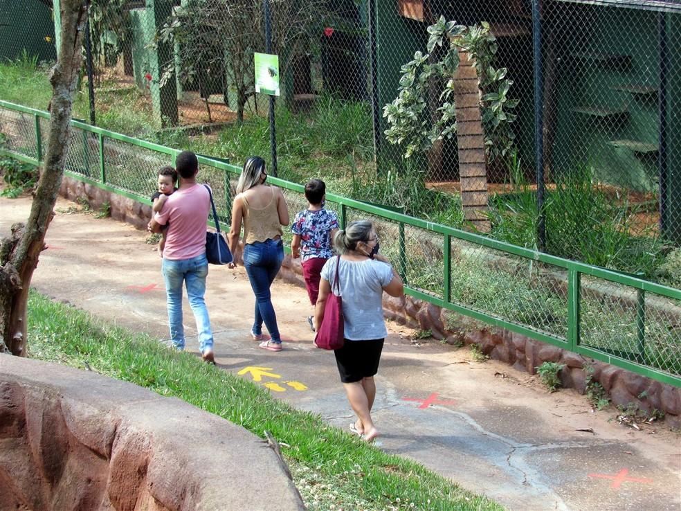 Zoológico da Cidade da Criança funciona de quinta a domingo, das 10h às 16h — Foto: AI/Cidade da Criança