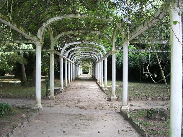 Os 11 jardins mais lindos do Brasil (Foto: JBRJ/Luis Felipe Esteves/Divulgação)