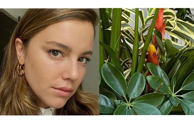 Alice Wegmann tem uma casa no Rio de Janeiro. Em seu lar, ela cuida de plantas, estuda, faz exercícios (Foto: Reprodução/Instagram)