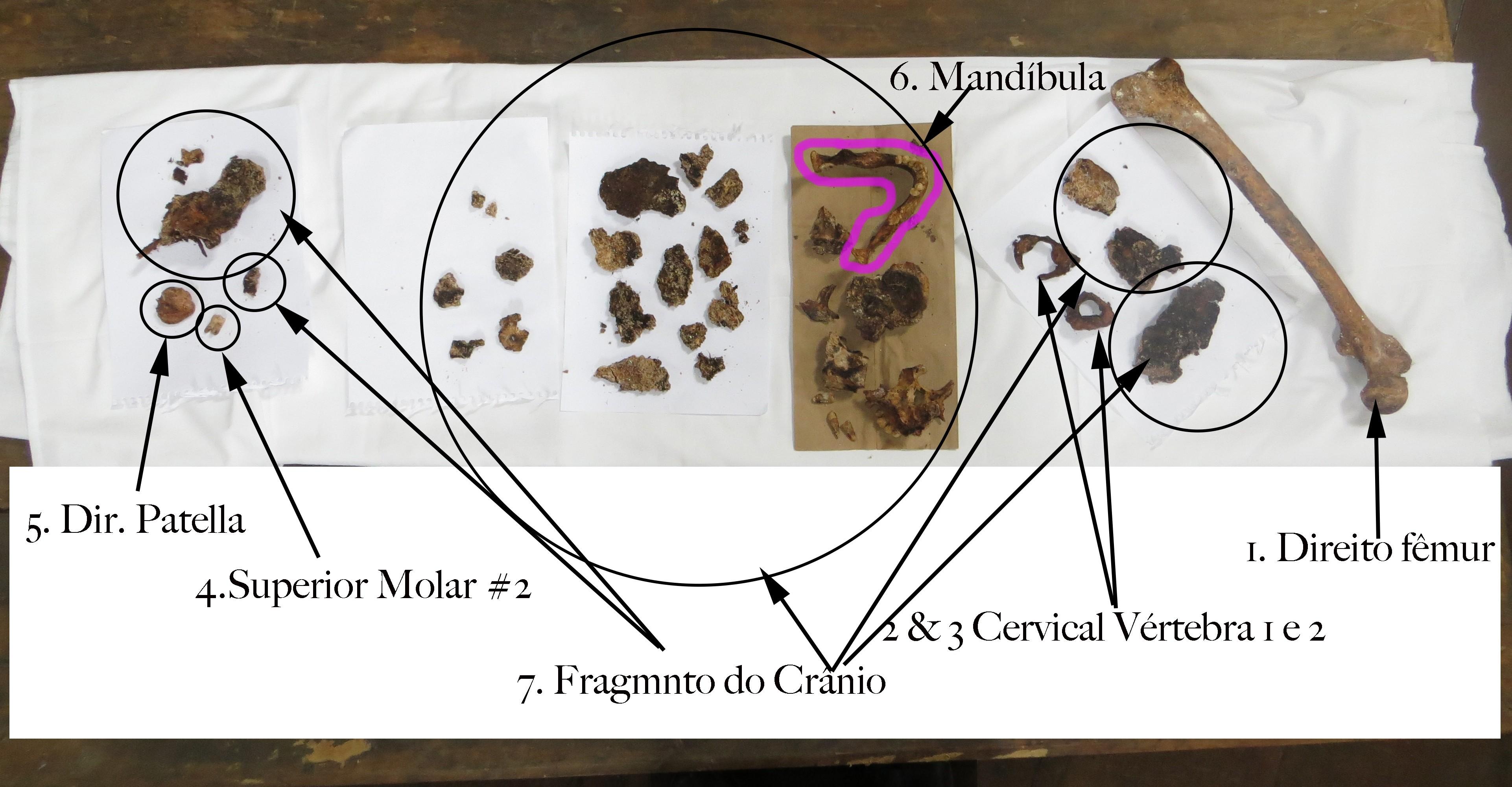 Os restos mortais de Chica da Silva