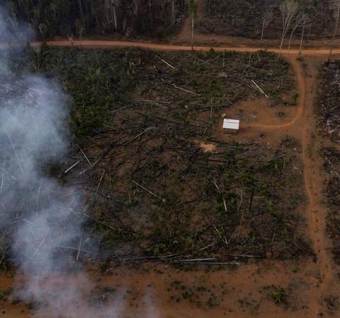 Imagens de sobrevoo mostram que sul do AM é nova fronteira do desmatamento