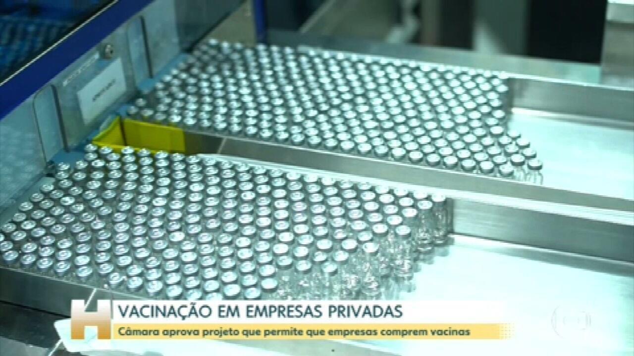 Deputados retomam hoje a análise do projeto que permite que empresas privadas comprem vacinas contra a Covid-19