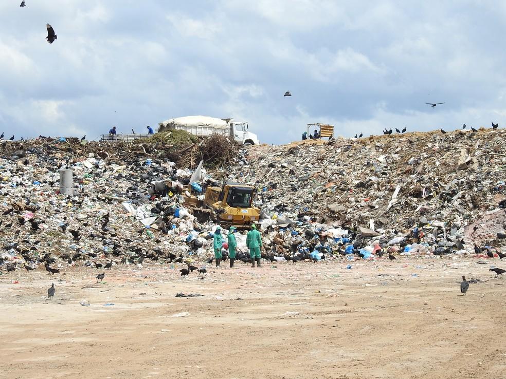 Brasil é o 4º maior produtor de lixo plástico do mundo; apenas 1,2% é reciclado. — Foto: Adneison Severiano/G1 AM