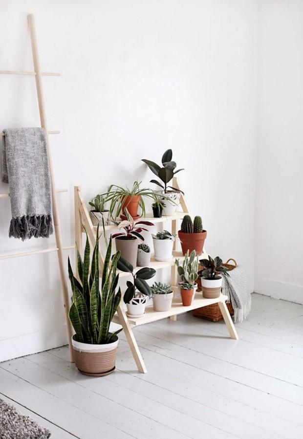 Vasos Para Suculentas 15 Ideias Criativas Para Organizar As Plantas