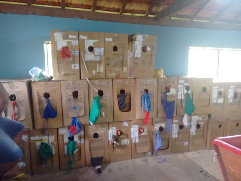 Aves serão encaminhadas para centro de cuidado animal (Foto: Polícia Ambiental/Divulgação)