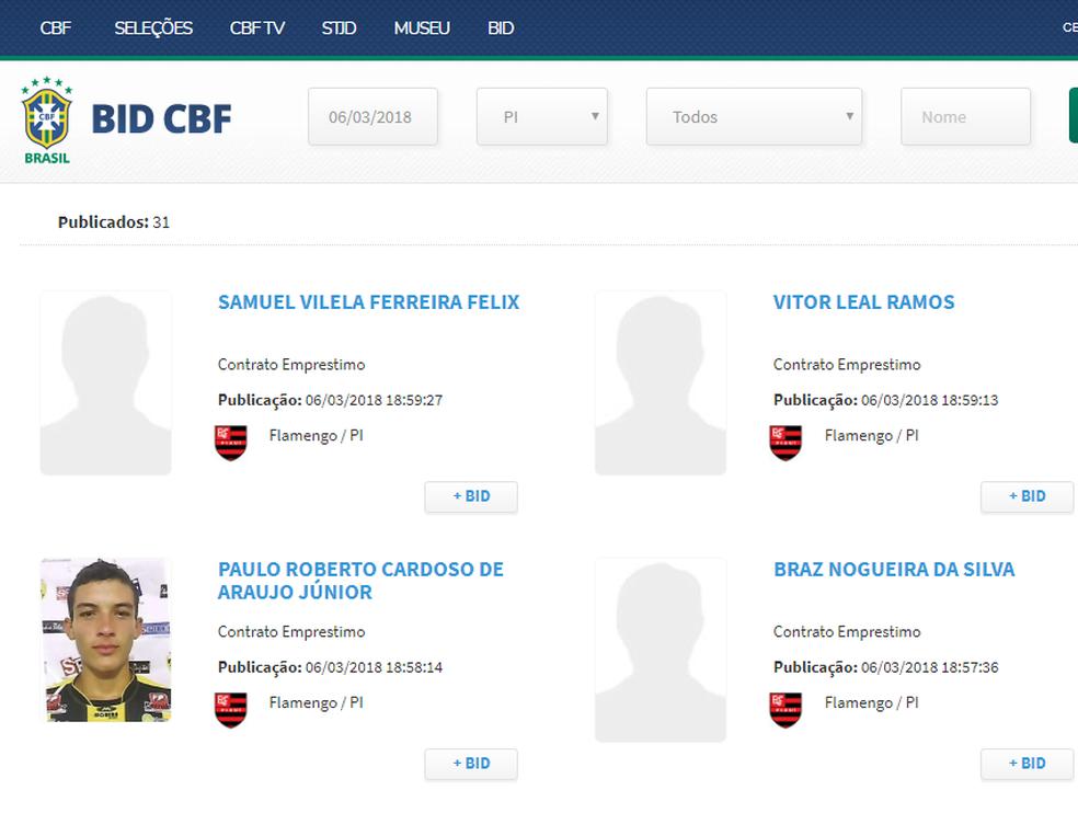 Flamengo-PI  (Foto: Reprodução/FFP)