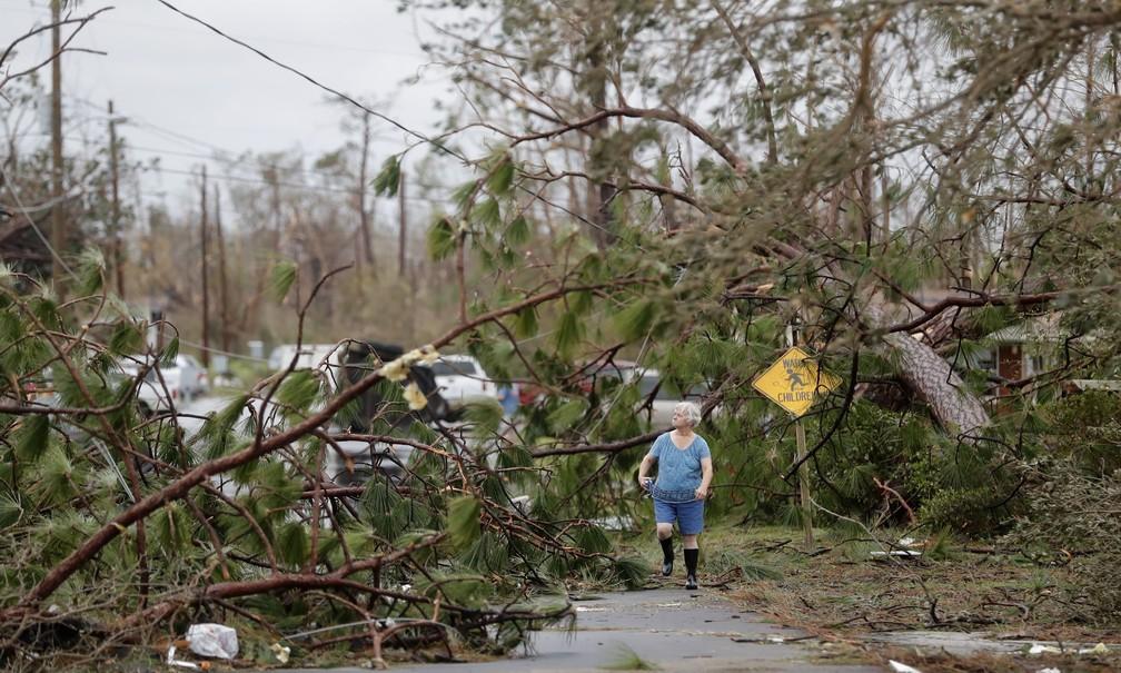 Mulher caminha entre árvores caídas pela passagem do furacão Michael em Panama City, na Flórida — Foto: Gerald Herbert/AP Photo