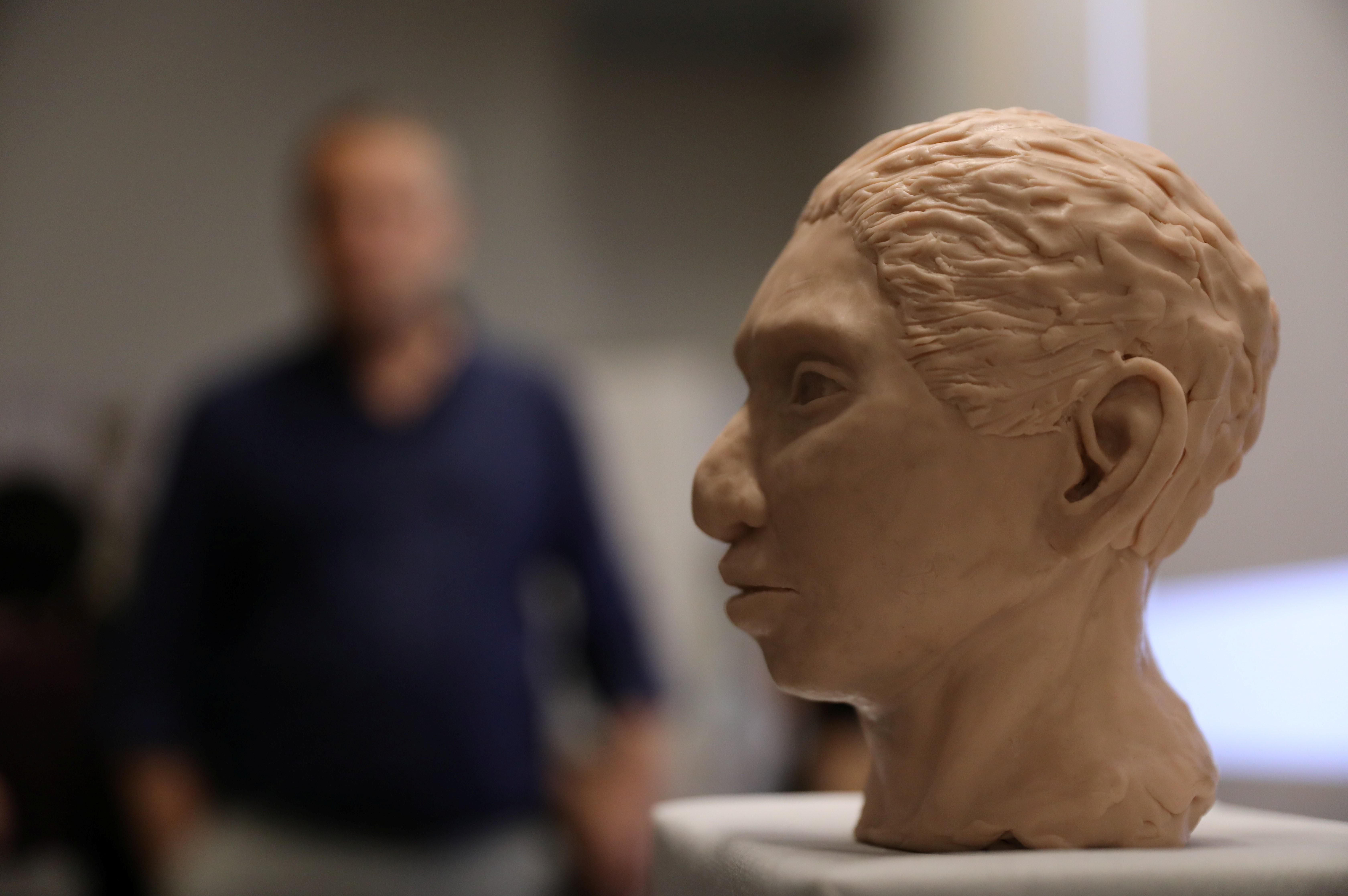 Cientistas reconstroem esqueleto misterioso de humano pré-histórico - Notícias - Plantão Diário