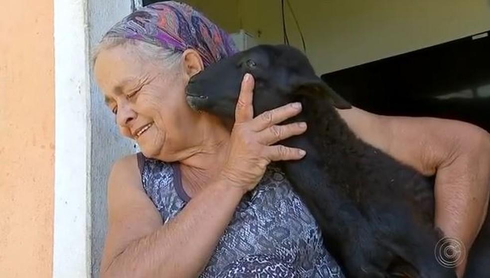 Maria das Dores Souza considera a cabrita como animal de estimação — Foto: Reprodução/TV TEM