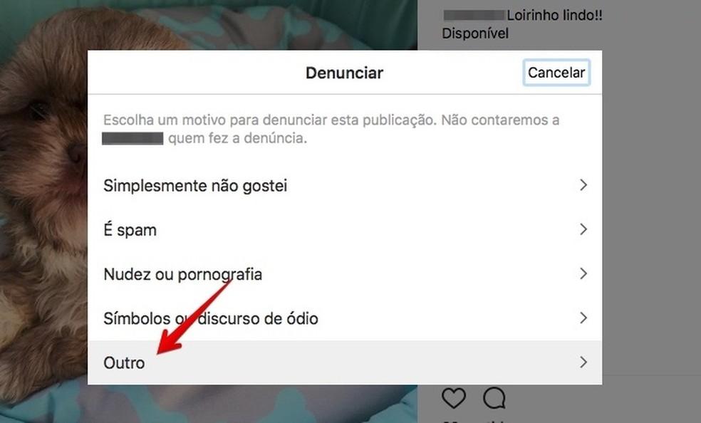 Denunciando publicação no Instagram pelo PC (Foto: Reprodução/Helito Bijora)