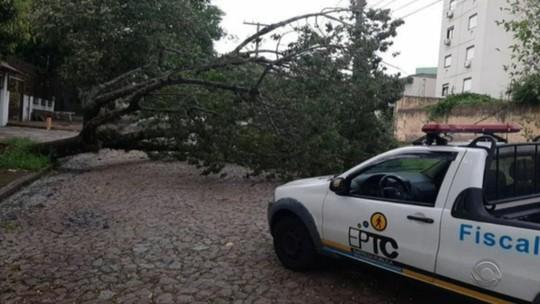 Chuva deixa pelo menos 1,2 mil casas danificadas no Rio Grande do Sul, diz Defesa Civil