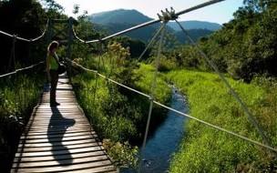 6 destinos para curtir o turismo rural no Brasil