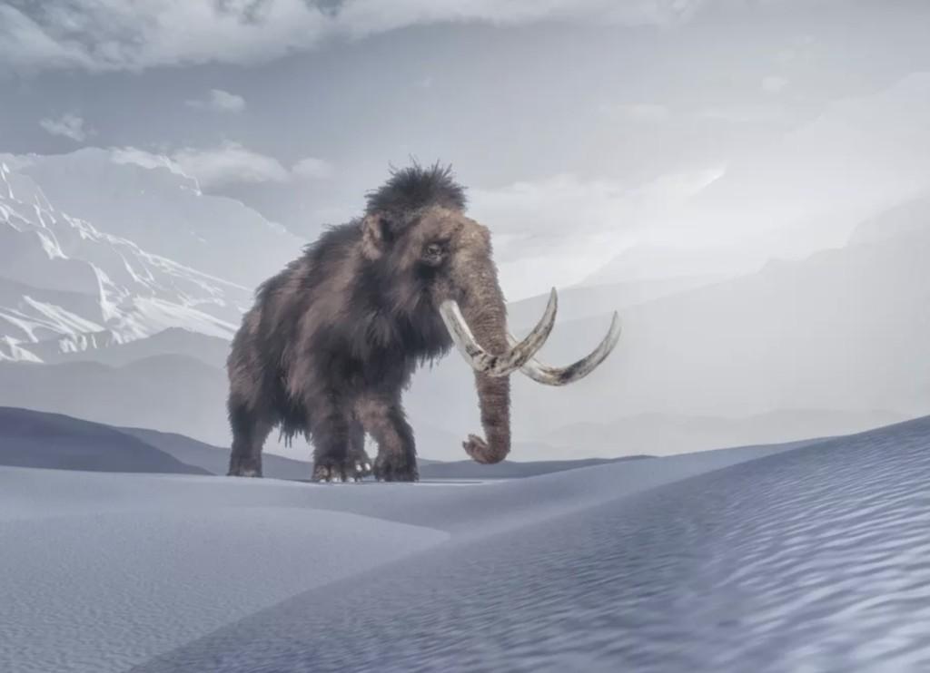 Empresa quer aplicar a técnica de edição genética CRISPR para trazer mamute-lanudo de volta à vida (Foto: Colossal Laboratories & Biosciences)