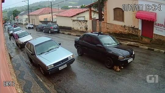 'Deu ânsia ao ver tanta maldade', diz dona de vira-lata arrastada por carro em rua de Angatuba