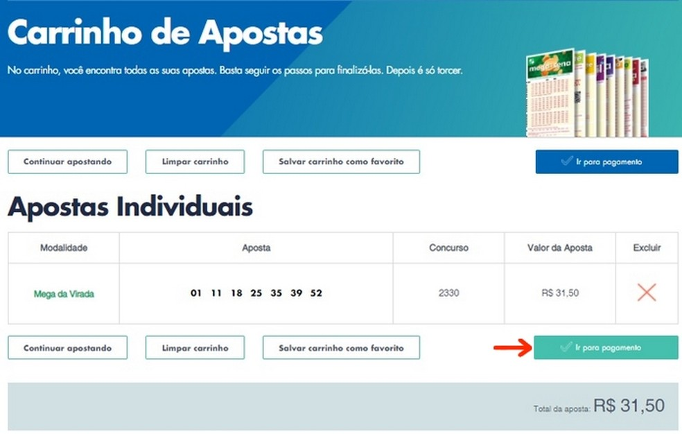 Carrinho de apostas da Loterias da Caixa com jogos na Mega da Virada  — Foto: Reprodução/Raquel Freire