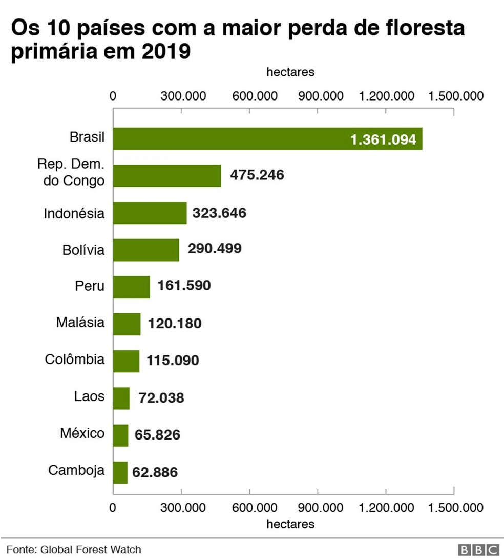 Infográfico da BBC traz números sobre os 10 países com a maior perda de floresta primária em 2019 — Foto: Infografia: BBC