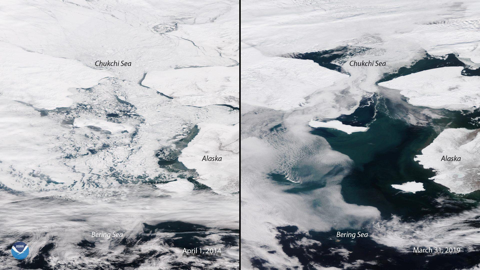 Imagens capturadas por satélites da Administração Atmosférica e Oceânica Nacional dos EUA ( NOAA) mostram derretimento de gelo no mar de Bering (Foto: NOAA)