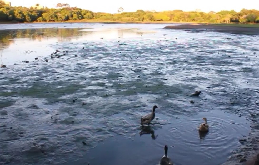 Represa do Castelinho se esvaziou após falha em fechamento de comportas em Franca, SP (Foto: Palavra Fácil Comunicação/Divulgação)