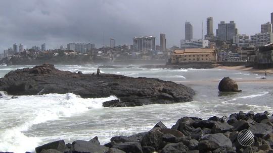 Baleia jubarte de mais de 12 metros é achada morta em praia no sul da Bahia