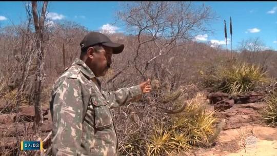 'Caçadores gritaram: vamos matar', diz vigia sobrevivente de confronto na Serra da Capivara