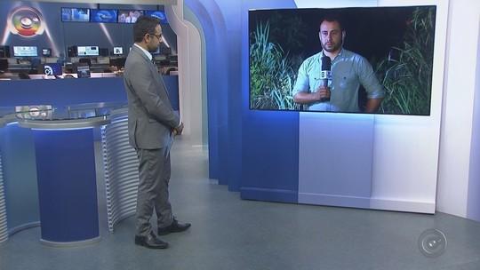 Secretaria de Saúde confirma casos de febre amarela em macacos em Rio Preto
