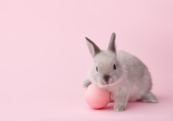 Cruelty-free (Foto: Thinkstock)