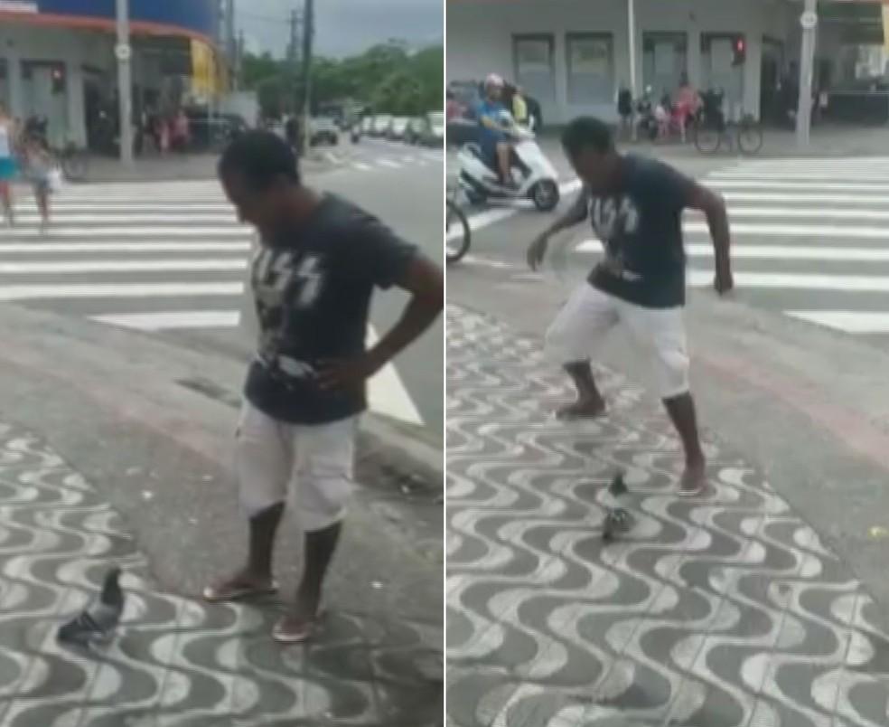 Homem é perseguido por pomba em Santos, SP (Foto: Reprodução)