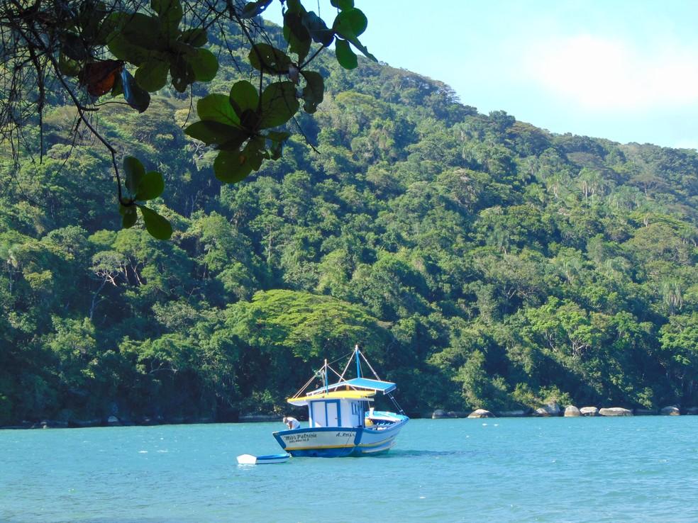 Ilha Grande é território preservado — Foto: Eduardo Lacerda/ TG
