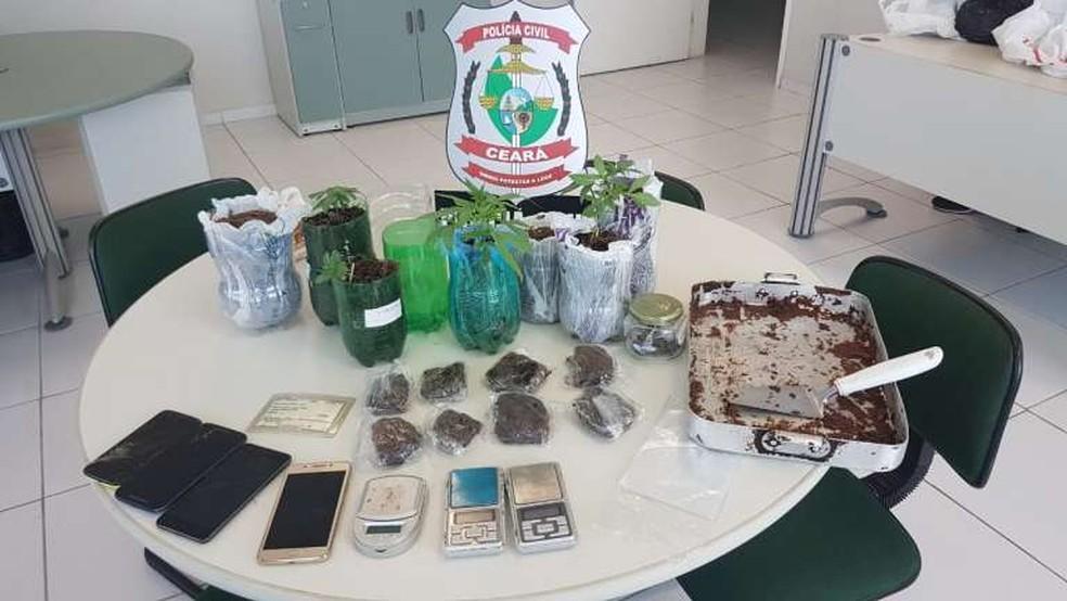 Recipientes onde era cultivada a maconha, pacotes do doce com maconha e celulares foram apreendidos — Foto: Divulgação