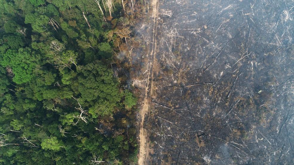 Vista aérea de área queimada na Amazônia, perto de Apuí, no Amazonas, no dia 11 de agosto. — Foto: Ueslei Marcelino/Reuters