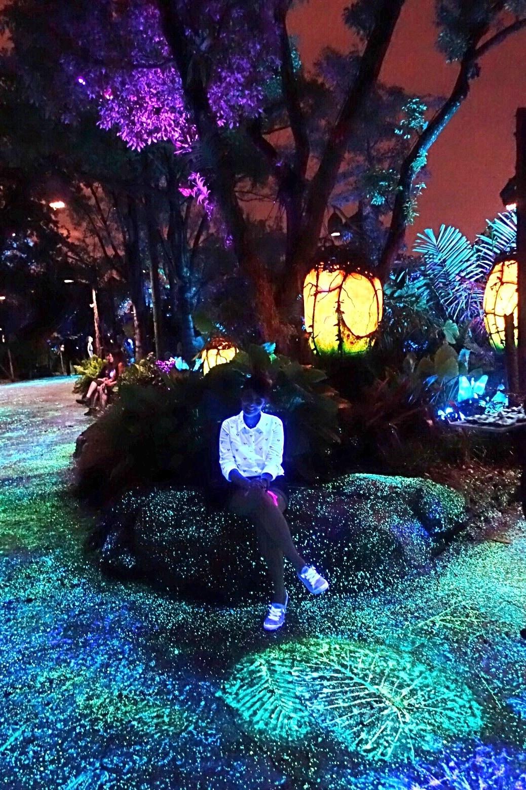 Floresta bioluminescente à noite e eu