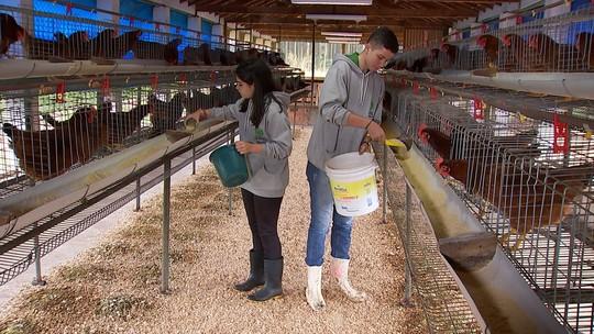 Aumenta o número de mulheres em cursos ligados ao agronegócio