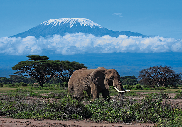 Kilimanjaro (Foto: Getty Images; ThinkStock)
