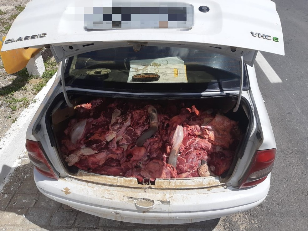 Carne foi apreendida na BR-232, em Sertânia — Foto: PRF/Divulgação