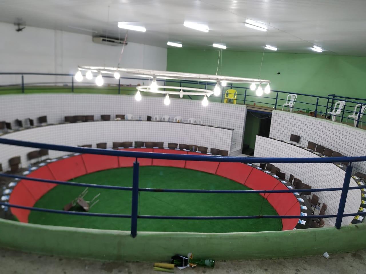 Operação fecha 'estádio' que sediava campeonato nacional de rinha de galos no Ceará e resgata 167 animais; vídeo