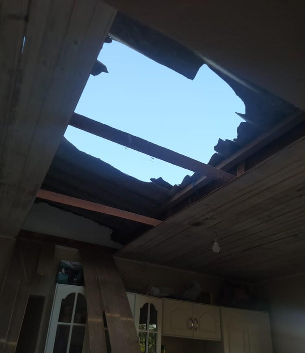 Moradora se assustou após bode subir em telhado e cair na cozinha de casa em Sorocaba — Foto: Luciana Vidigal/Arquivo Pessoal