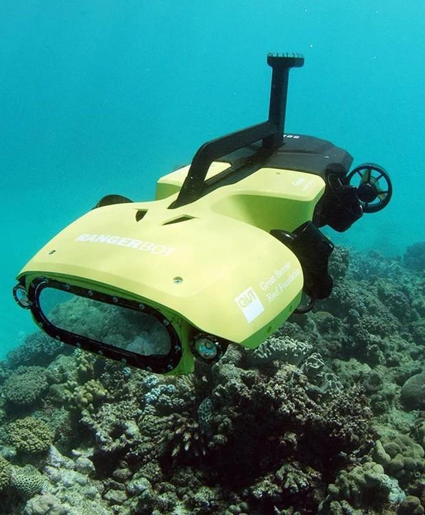 O drone ai até as regiões das barreiras de coral e emite larvas, que se fixam no solo do oceano, dando vida a um outro invertebrado (Foto: QUT/ Reprodução)