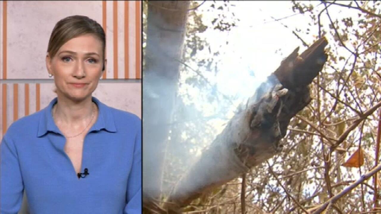 Ana Flor: Ricardo Salles não comunicou Braga Neto e Guedes sobre interrupção de combate a incêndios
