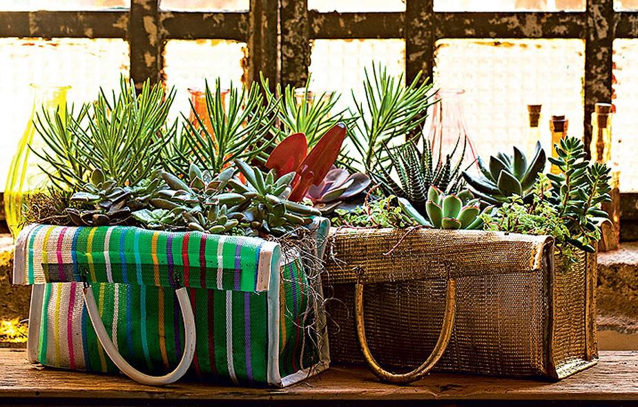 """Sem espaço para o jardim? Pegue aquela sacola de feira que está sem função e plante diversas espécies nela! Claudia Regina, do Ateliê La Calle Florida, apostou nas suculentas: """"Plantei as espécies direto, pois o tecido é furadinho e bem drenável"""", conta"""