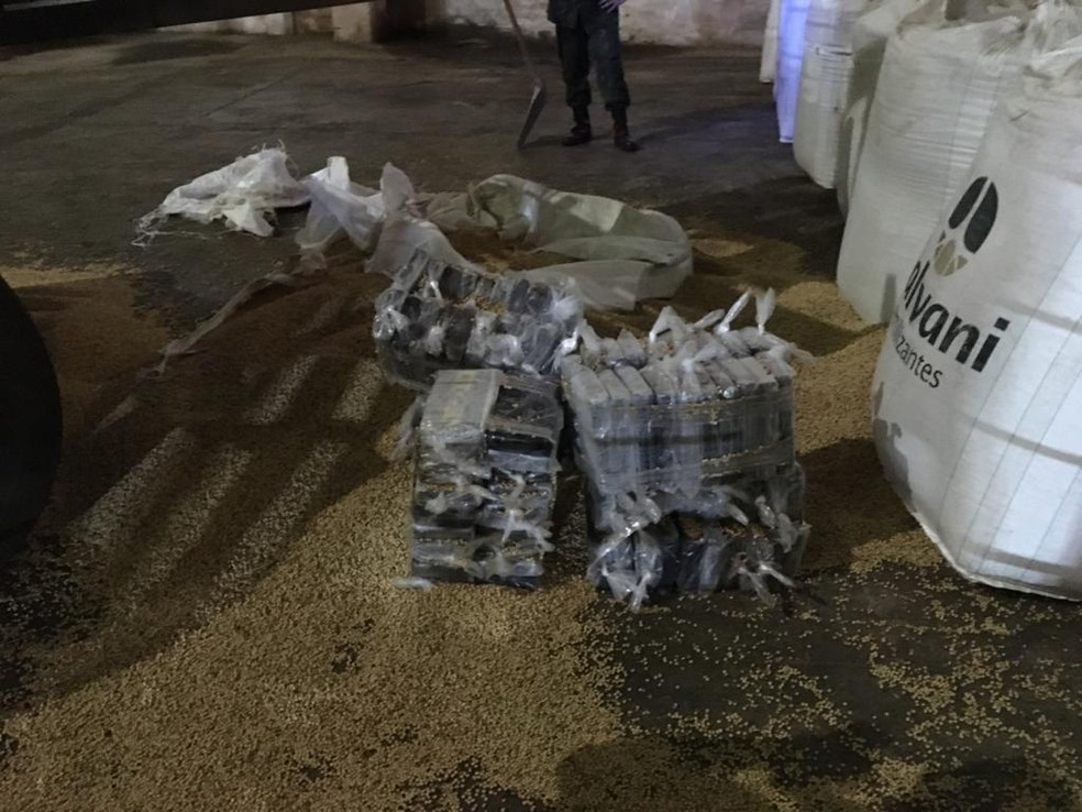 Mais de 200 kg de cocaína são apreendidos entre carga de soja no porto de Ilhéus, sul da Bahia — Foto: Divulgação/Polícia Federal