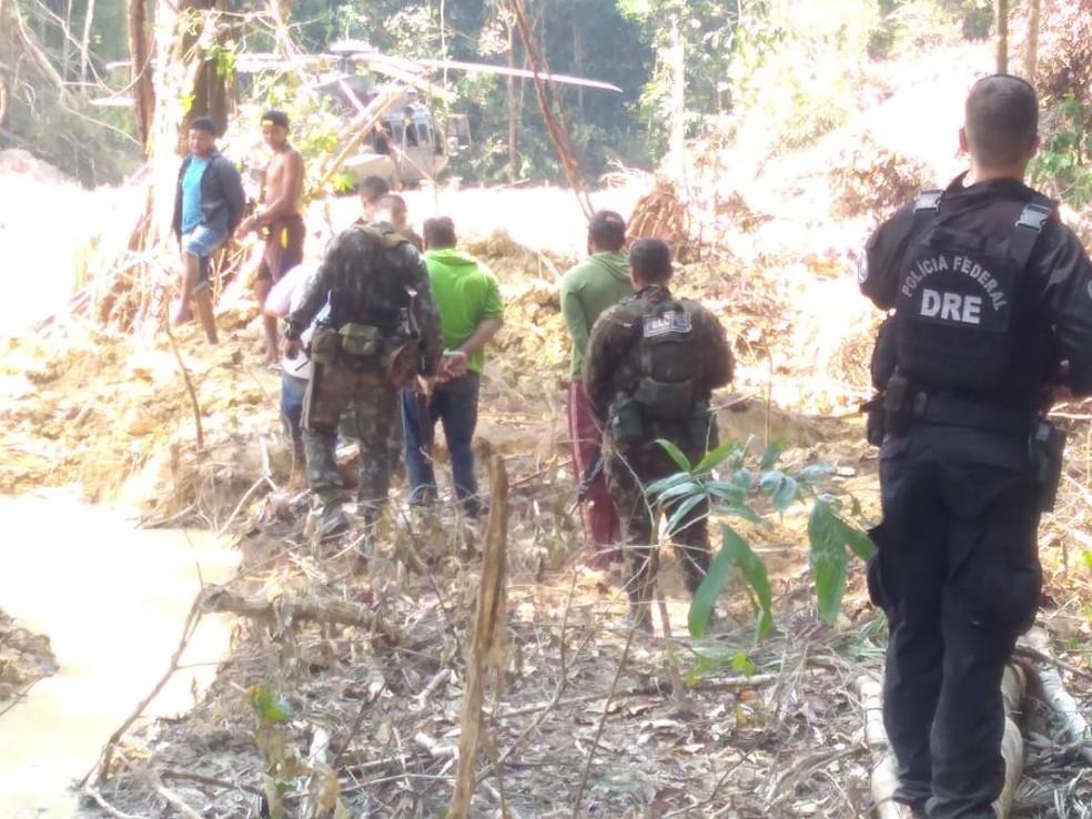 Policiais prenderam suspeitos no meio da mata — Foto: PF/Divulgação