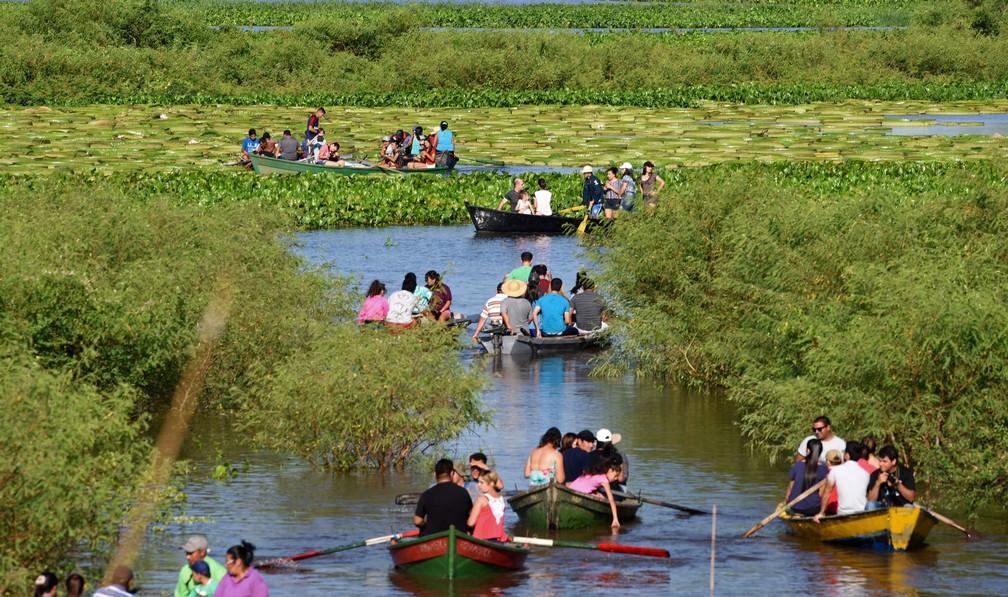Turistas passeiam de barco em meio a vitórias-régias gigantes na lagoa de Piquete Cue, no Paraguai (Foto: Norberto Duarte/AFP)