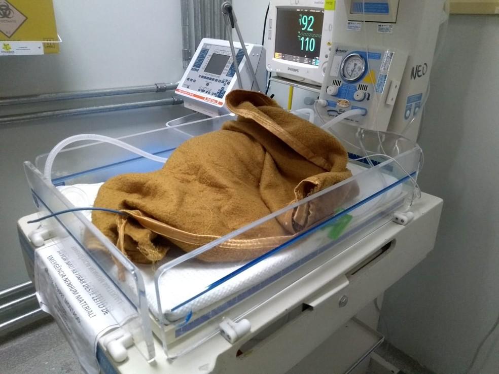 Bebê abandonado em caixa de isopor internado em hospital no DF — Foto: Conselho Tutelar do DF/Divulgação