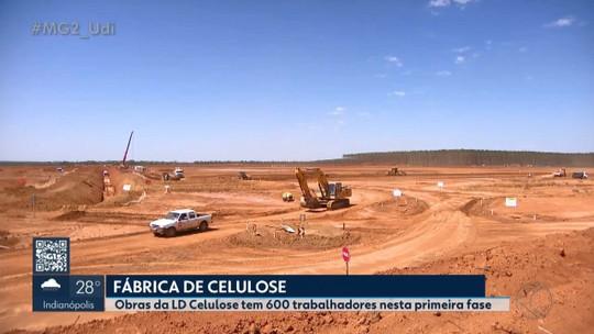 Obras da fábrica de celulose em Araguari tem 600 trabalhadores nesta primeira fase