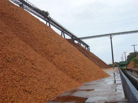 Governo Federal define para setembro leilão de parte do Porto de Santana, no AP
