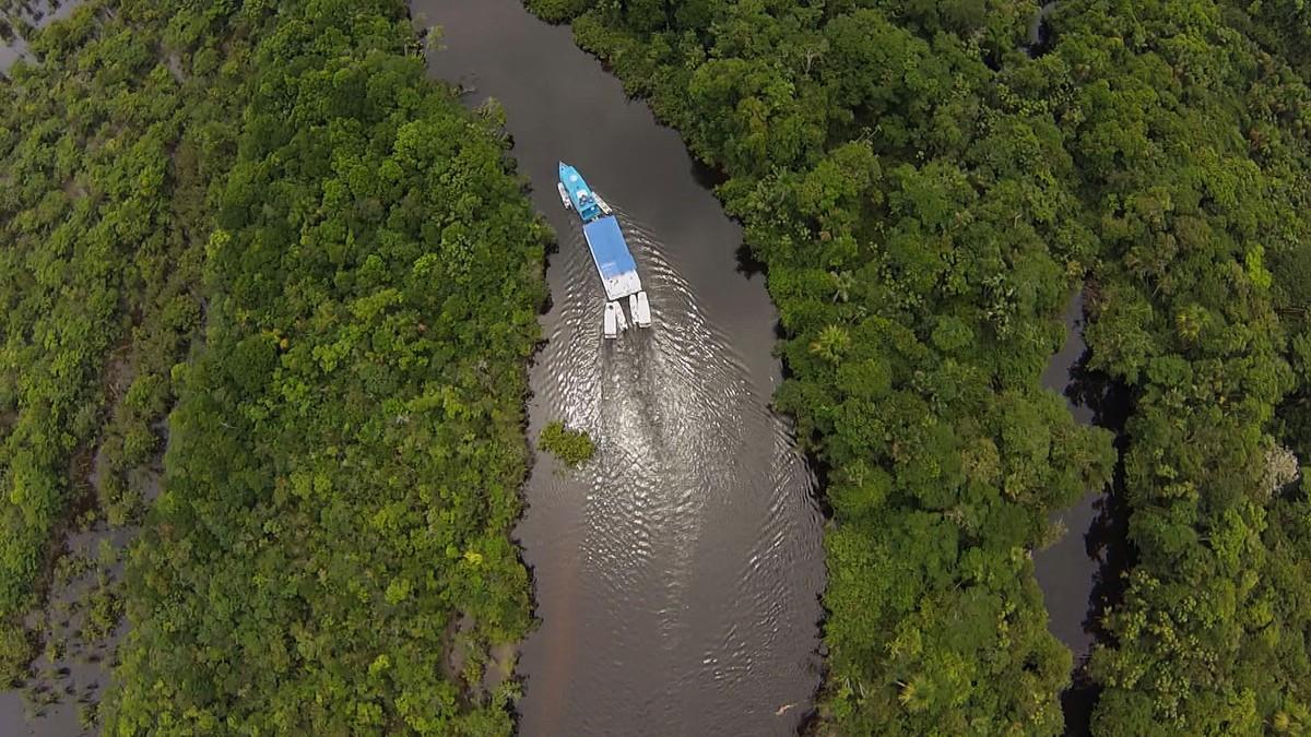 Tucunarés e traíras são fisgados no Alegria, rio preservado da Amazônia