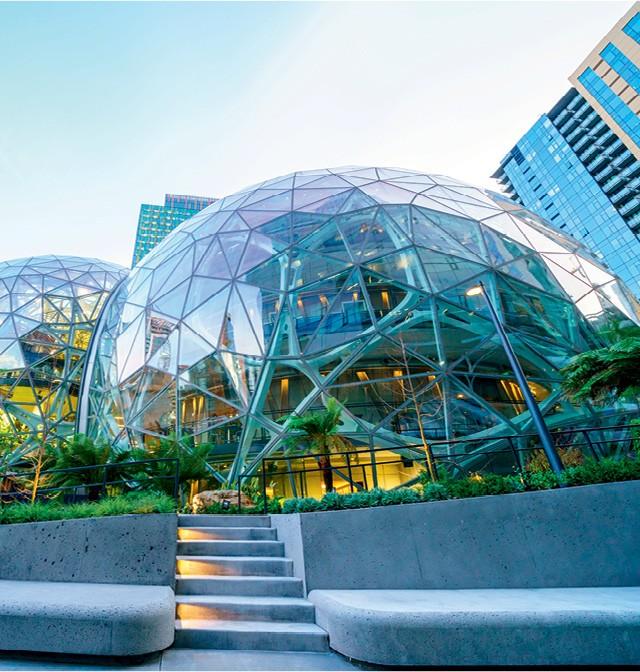 A Amazon deu início ao cultivo das plantas cinco anos antes da inauguração do The Spheres, em  2018 (Foto: Getty image)