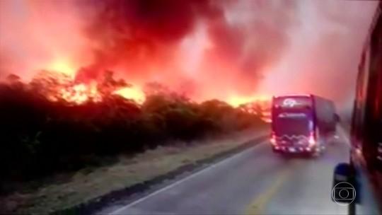 Bombeiros lutam contra incêndio florestal na Bolívia